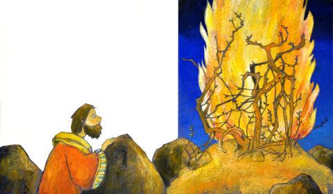 Mose, Die schönsten Bibelgeschichten, Dieter Konsek